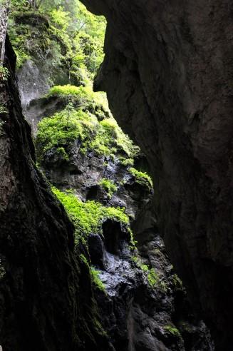 Breitachklamm - Grün