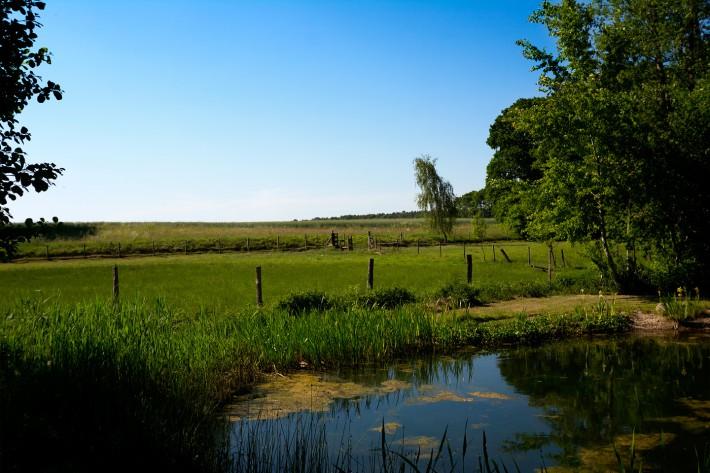 Badeteich auf dem Heidehof in Radenbeck - Lüneburger Heide