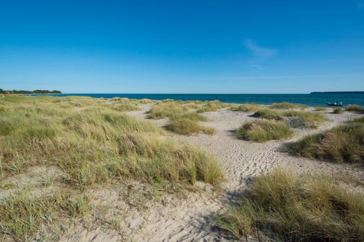 Der Weg zum Strand durch die Dünen